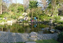 03 Mars: Jardin japonais à Holland's Park