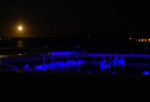 19 Septembre: bientôt l'équinoxe
