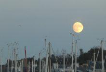 13 Novembre: la lune, encore, toujours et à jamais