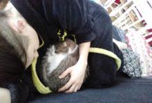 29 Février: sieste avec un ouistiti