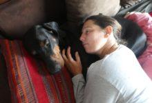 19 Juin: amour canin