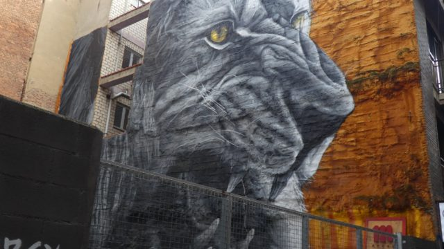 23 Septembre : El leon de León