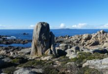 02 Janvier: baleine de pierre