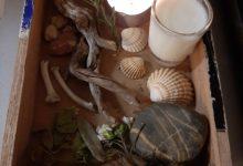 02 Février : autel d'Imbolc