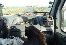 24 Février : back on the road