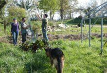 08 Avril : travail en équipe