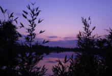 16 Avril : peinture du crépuscule