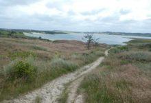 18 Juillet : dunes nordiques